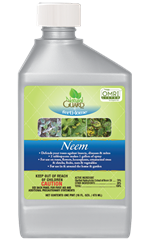 Neem Concentrate