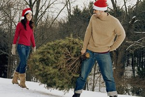 keeping a christmas tree fresh - How To Keep Christmas Tree From Drying Out